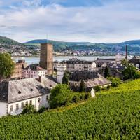 9-daagse riviercruise met mps Statendam Over de Rijn en Moezel naar Cochem en Rüdesheim de jong intra